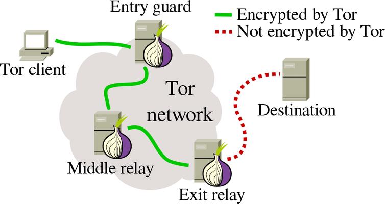 Tor Network Details